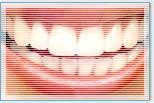 歯が命っ!!