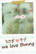 うさぎラブ We Love Bunny