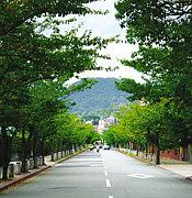 関学職員☆2010年度内定者