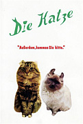 ディー・カッツェ Die Katze