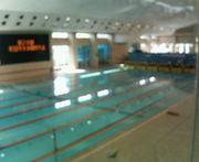 町田第一中学校 水泳部