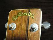 ♪ジャパニーズオールドギター♪