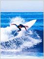 日本全国のサーフィン仲間ゲット