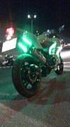 Rider's -L.O.G-