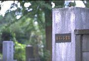 雑司ヶ谷霊園ブラブラ