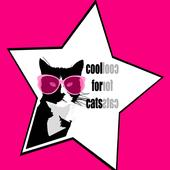 cool for cats records