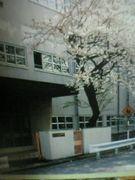 ビバ!熊西中学校