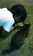 まっつんの猫の愛しかたは異常