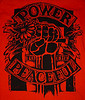 POWER TO THE PEACEFUL FESTIVAL