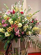 診察会にお花を贈ろう!企画