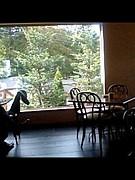 カフェでLesson 【塾Cafe】