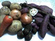 根菜(芋類)に関する研究コミュ