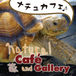 Natural Cafe and Gallery