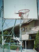 千葉大学附属中学校バスケ部