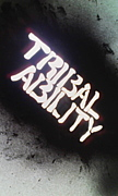 TRIBAL ABILITY