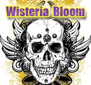 Wisteria Bloom