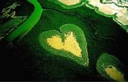 Yann Arthus‐Bertrand