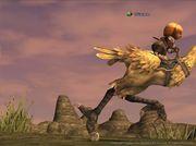Garuda鯖