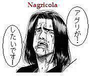 名古屋:アグリコラを楽しむ会