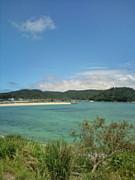 沖縄(北部)やんばるドライブ