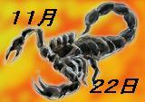 11月22日生まれ 蠍座の人☆