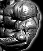 巨大 三頭筋  Big triceps