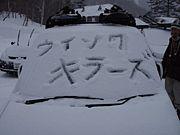 ★2008★桜美林ウィンクキラーズ