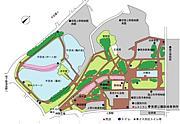上野公園で早朝ランニング♪