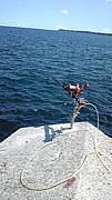 イシダイ釣師の会