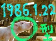 1986年 1月22日 O型