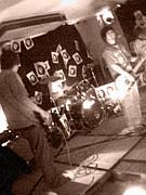 日本のバンドが好き♪