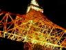 東京タワーで逢いましょう♪