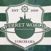 Ferret World みなとみらい店