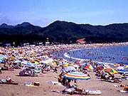 弓ヶ浜(伊豆)