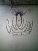 BIGOUDI international