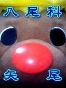 □八尾科矢尾□