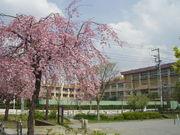 半田小学校 1993年度卒業生