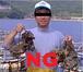 牡蠣が食えません